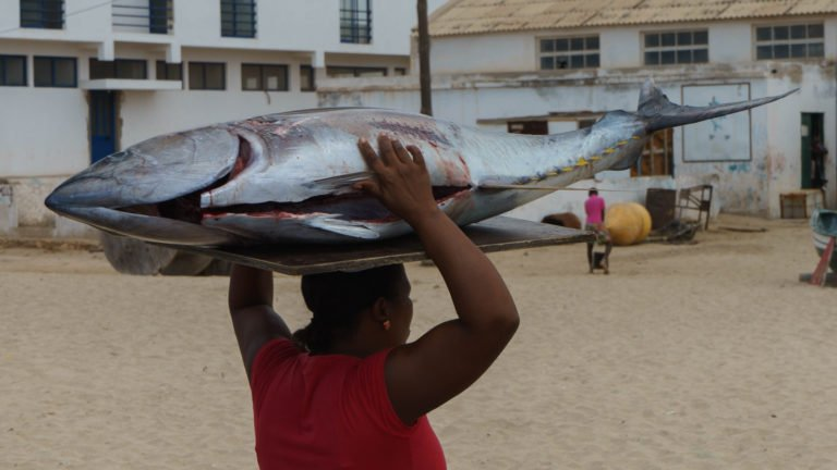 Fishing in Cabo Verde